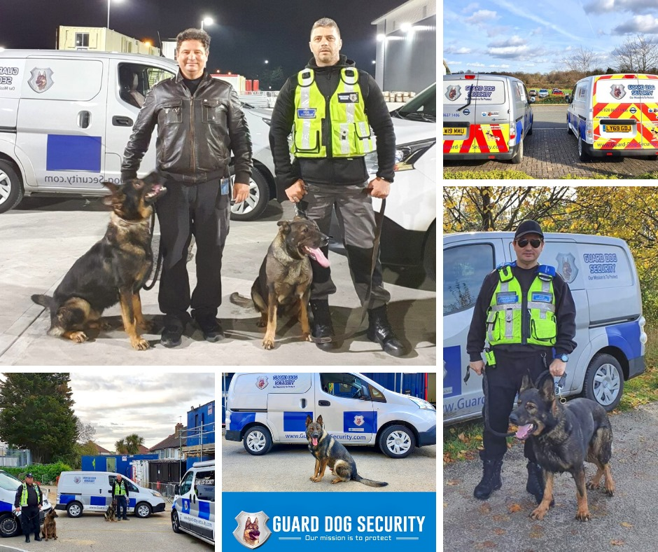 Guard Dogs is the Right Choice for Your Security Needs